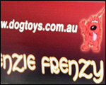 Kenzie Frenzy custom vehicle magnetic signs