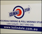 Car Magnets for Kolindale Stud